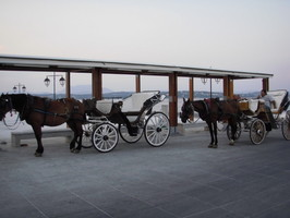 Horse Buggies, Spetses Island Greece